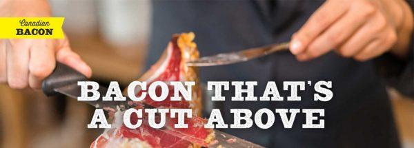 fionn bacon