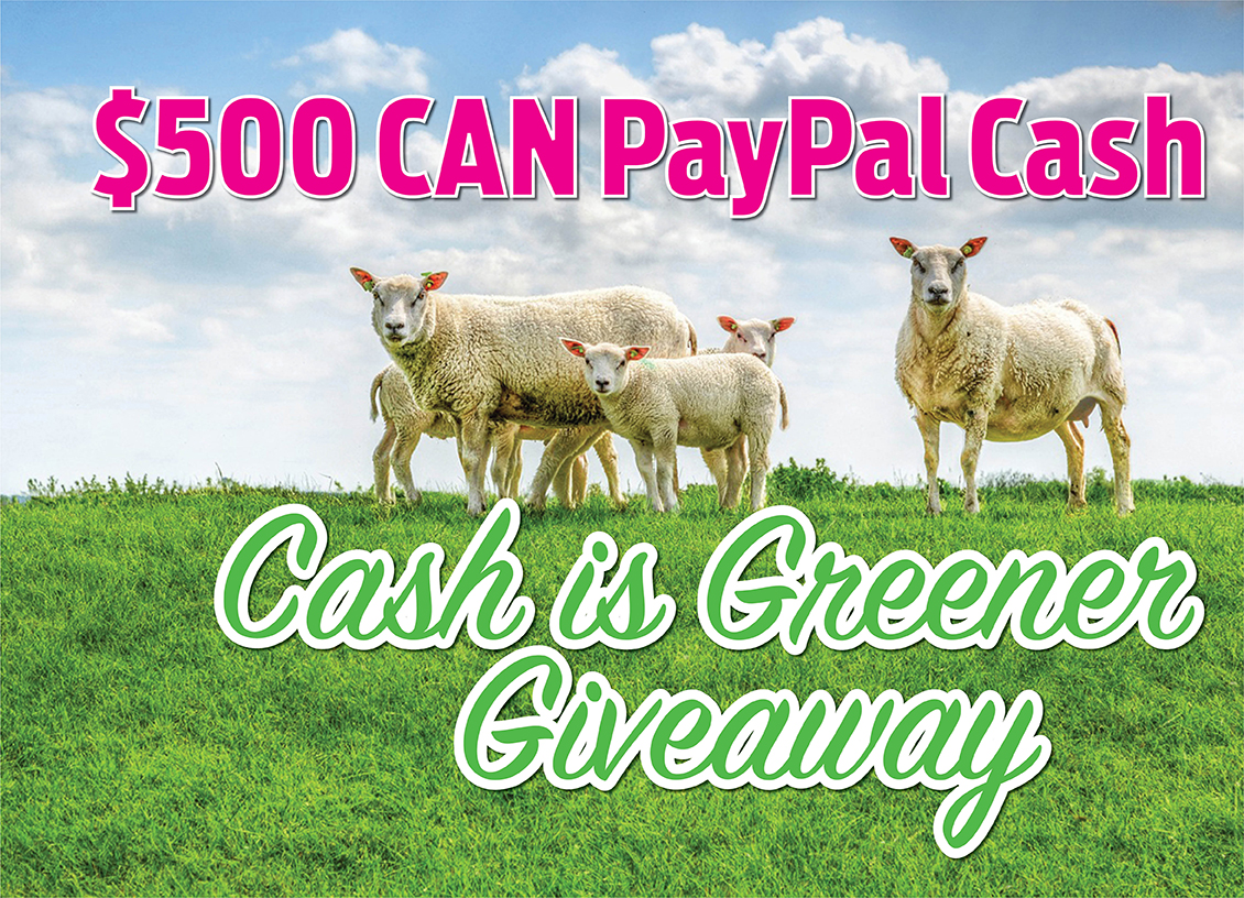 Win $500 CAN in the Cash Is Greener Giveaway! Open Worldwide! #CashIsGreener