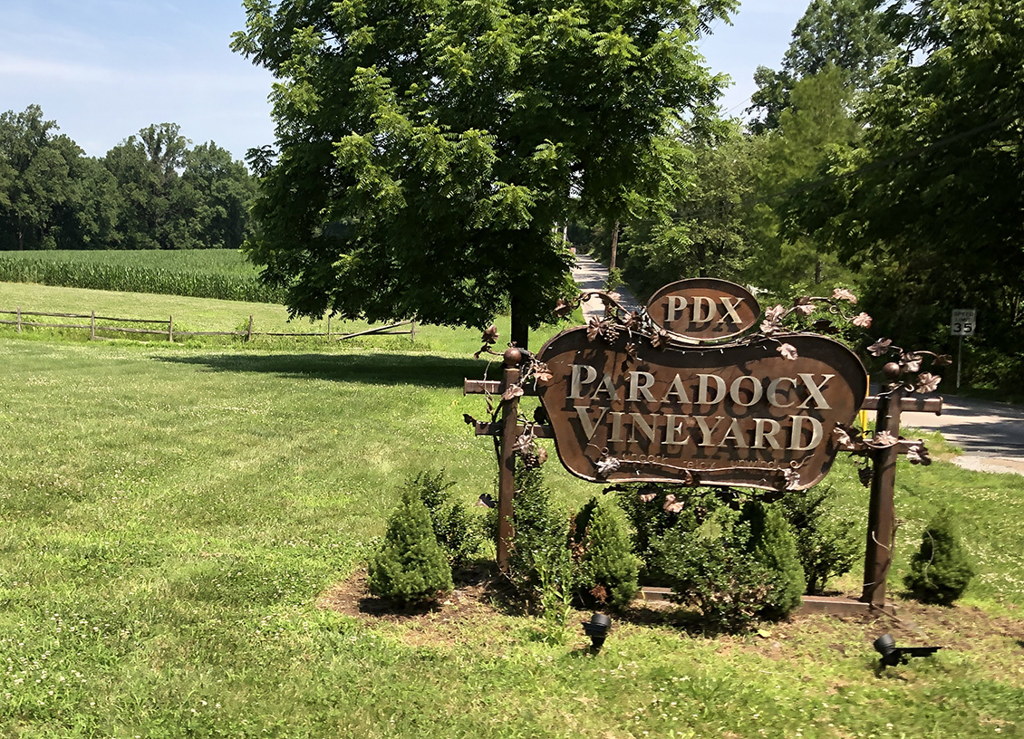 Raise A Glass: A Tour and Tasting at Paradocx Vineyard in Chester County