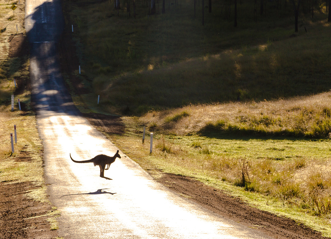 An Australian Travel Guide: Top 4 Road Trips You Must Experience @LucasHParker1