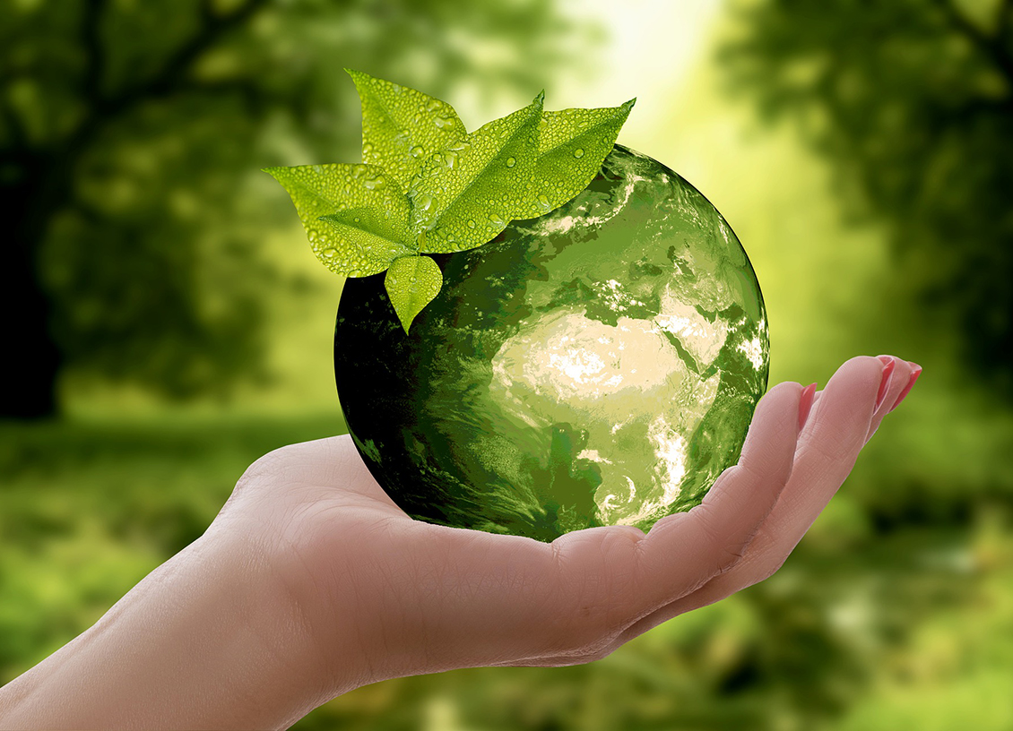 Going Green: How To Do Your Bit To Stop Climate Change