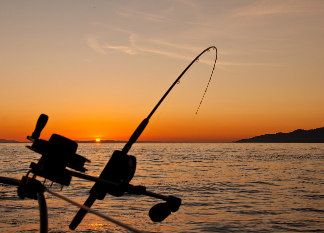 Fishing Charter Trips for Stress-Free Fishing Fun with Loved Ones