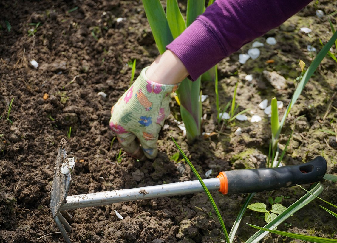 Improving Your Lifestyle and Mental Fortitude Through Gardening