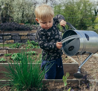 How To Keep Your Garden Safe For Children