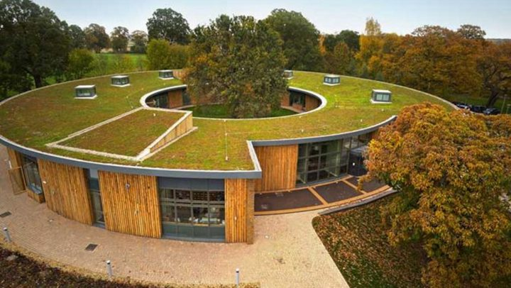 As Cities Become Hotter, Green Roofs Provide Cooling